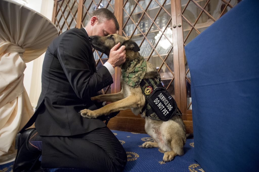 American Humane Hosts National Convening To Help Veterans