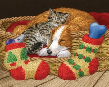 buy american humane holiday cards american humane - Humane Society Christmas Cards