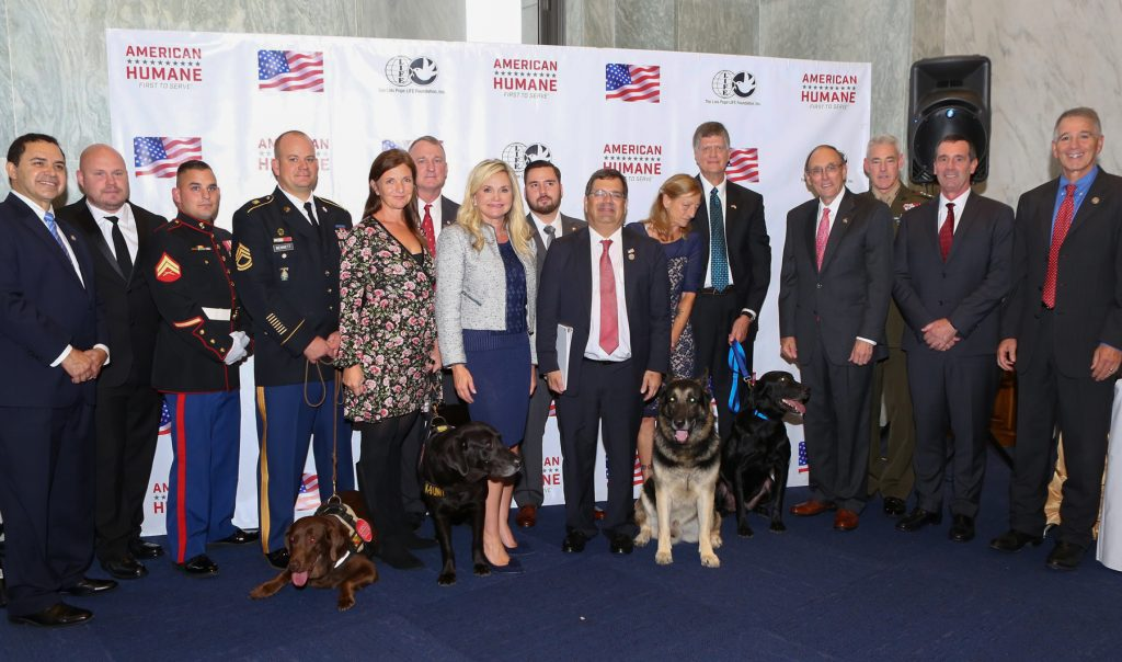 Five us military dogs receive nations top honors for valor at k9 medal 2017 group shot 1024x604g m4hsunfo